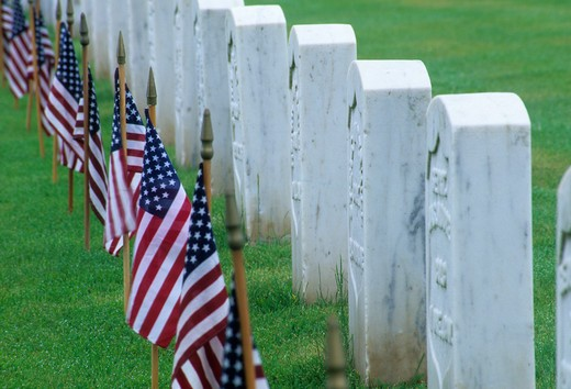 Tombstone and American flags in a cemetery, Roseburg National Cemetery, Oregon, USA : Stock Photo