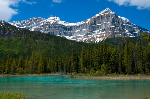 Stock Photo: 1596-2676 River with a mountain range in the background, Mistaya River, Waputik Mountains, Banff National Park, Alberta, Canada