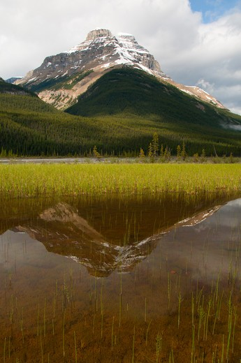 Stock Photo: 1596-2690 Reflection of a mountain on water, Mount Amery, North Saskatchewan River, Banff National Park, Alberta, Canada
