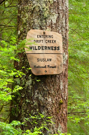 Signboard on a tree, Drift Creek Wilderness, Siuslaw National Forest, Oregon, USA : Stock Photo