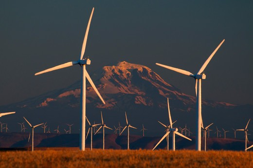 Stock Photo: 1596-2788 Wind turbines and wheat field with Mt Hood in the background, Sherman County, Oregon, USA
