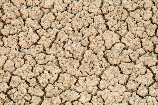 Stock Photo: 1596-2817 Clay cracks, Painted Cove Trail, John Day Fossil Beds National Monument, Oregon, USA