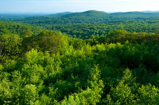USA, Connecticut, View from Soapstone Mountain, Shenipsit State Forest : Stock Photo