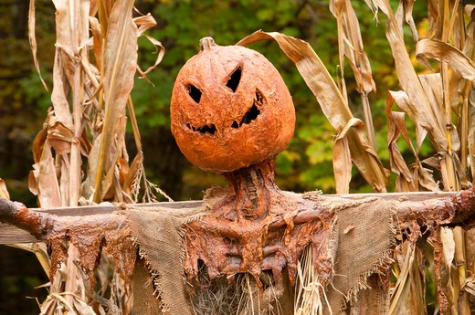 Stock Photo: 1596-2860 USA, Connecticut, Nathan Hale Homestead, Halloween decoration