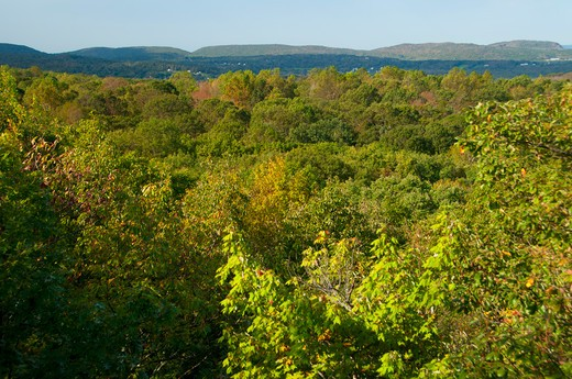 USA, Connecticut, Cockaponset State Forest, Mattabesett Trail, View from Bear Rock : Stock Photo