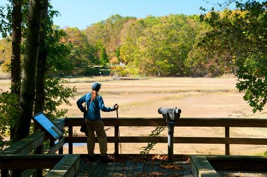 USA, Connecticut, Stewart B McKinney National Wildlife Refuge, Salt Meadow Unit, Salt marsh observation deck : Stock Photo
