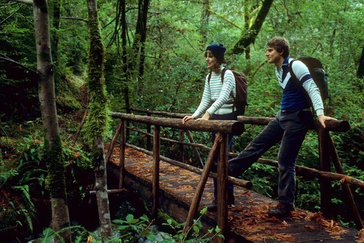 Stock Photo: 1596-2974 Two hikers standing on a bridge in a forest, Painted Rock Creek, Lower Rogue River Trail, Rogue Wild And Scenic River, Siskiyou National Forest, Oregon, USA