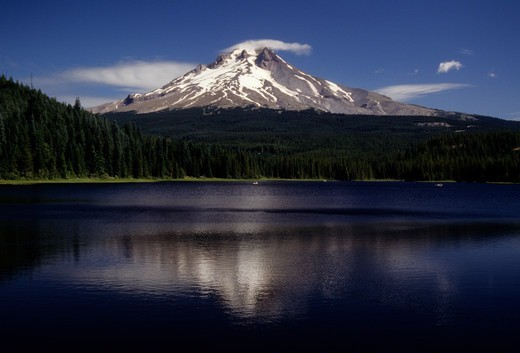 Trillium Lake in front of Mt Hood, Mt Hood National Park, Oregon, USA : Stock Photo