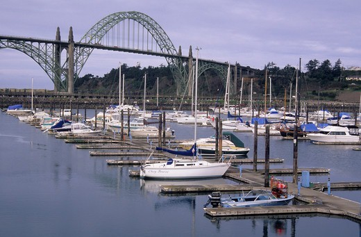 Stock Photo: 1596-3138 Boats at dock with a bridge in background, Newport Marina, Newport, Oregon, USA