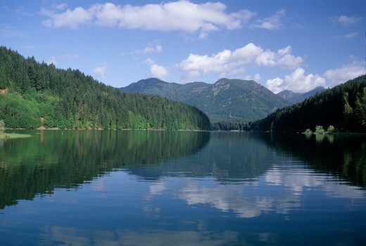 Stock Photo: 1596-3167 Reflection of trees and clouds on water, Detroit Lake, Willamette National Forest, Oregon, USA
