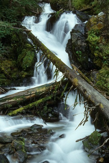 Stock Photo: 1596-3185 Flowing river, East Fork Wallowa River, Wallowa-Whitman National Forest, Oregon, USA