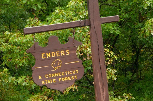 Stock Photo: 1596-3338 State Forest sign, Enders State Forest, Granby, Hartford County, Connecticut, USA