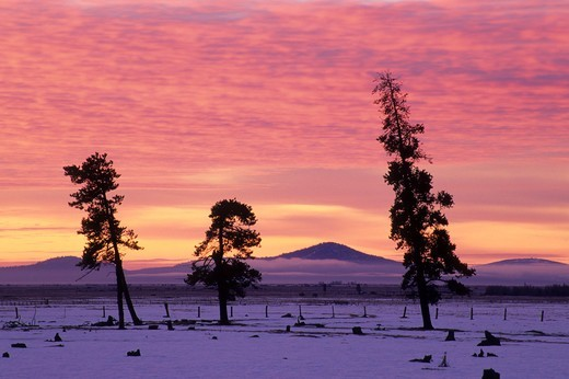 Stock Photo: 1596-3354 USA, Oregon, Klamath County, Ranchland sunrise
