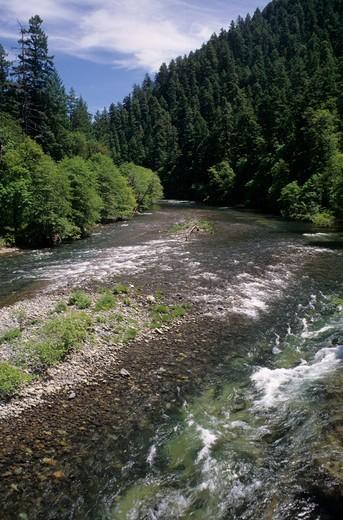 USA, Oregon, Umpqua National Forest, North Umpqua Wild & Scenic River : Stock Photo