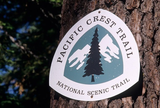 USA, Oregon, Rogue River National Forest, c, Pacific Crest Trail sign on tree trunk : Stock Photo