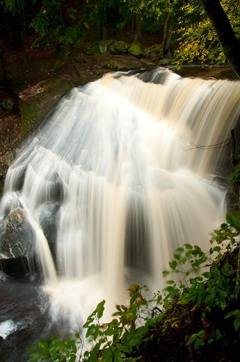 Stock Photo: 1596-3474 USA, Connecticut, Enders State Forest, Waterfall on Enders Brook