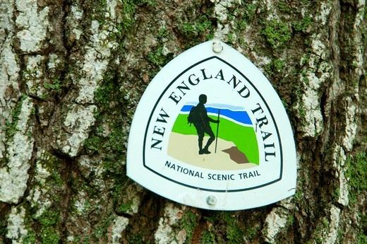 USA, Connecticut, Penwood State Park, Metacomet Trail, New England National Scenic Trail marker on tree : Stock Photo