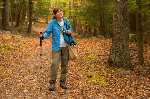 Stock Photo: 1596-3497 USA, Connecticut, Manchester, Case Mountain Recreation Area, Hiker on forest path