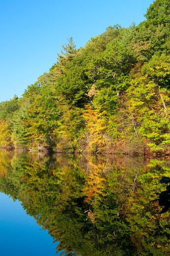 Stock Photo: 1596-3499 USA, Connecticut, Case Mountain Recreation Area, Manchester, View of Case Pond