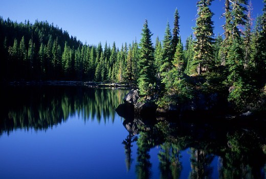 Stock Photo: 1596-3675 USA, Oregon, Willamette National Forest, Mt Washington Wilderness, Tenas Lake