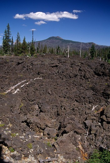 Stock Photo: 1596-3676 USA, Oregon, Willamette National Forest, Mt Washington Wilderness, Lava flow above Hand Lake
