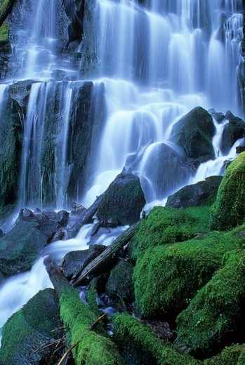 USA, Oregon, Willamette National Forest, Three Sisters Wilderness, Erma Bell Falls : Stock Photo