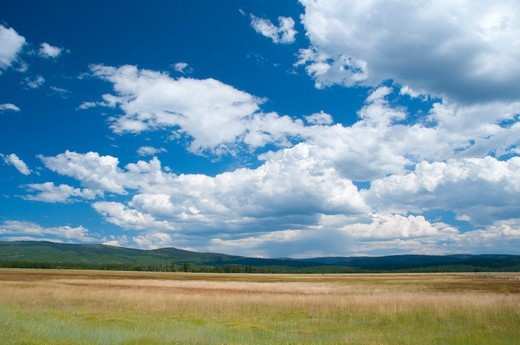 Stock Photo: 1596-3691 USA, Oregon, Malheur National Forest, Logan Valley
