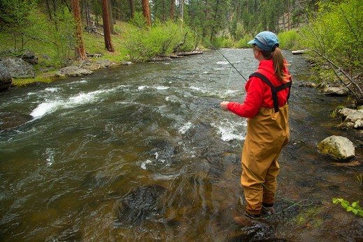 Stock Photo: 1596-3711 USA, Oregon, Malheur National Forest, Malheur Wild and Scenic River, Woman Fly fishing