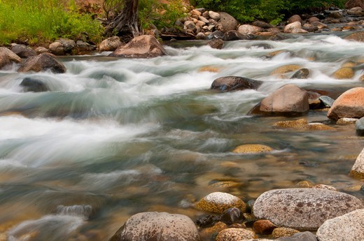 Stock Photo: 1596-3738 USA, Oregon, Wallowa-Whitman National Forest, Eagle Creek Wild and Scenic River, Stones in splashing water