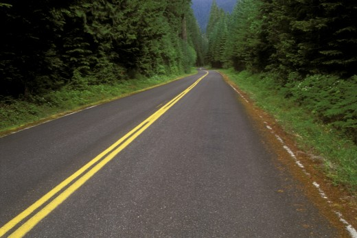 Highway passing through a forest, Aufderheide National Scenic Byway, Willamette National Forest, Oregon, USA : Stock Photo