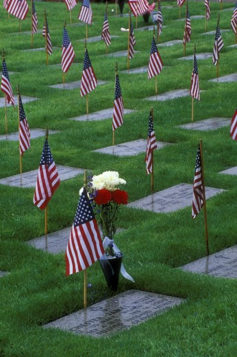 Stock Photo: 1596-409 High angle view of graves with American flags in a cemetery, Roseburg National Cemetery, Roseburg, Oregon, USA