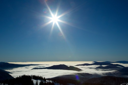 USA, Oregon, Mt Hood National Forest, Fog with sunburst above forest : Stock Photo