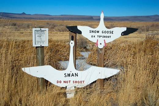 Stock Photo: 1596-4211 USA, Oregon, Oregon Outback Scenic Byway, Summer Lake Wildlife Area, Hunting geese sign