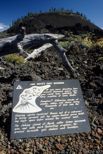 USA, Oregon, Newberry National Volcanic Monument, Lava flow at Lava Butte : Stock Photo
