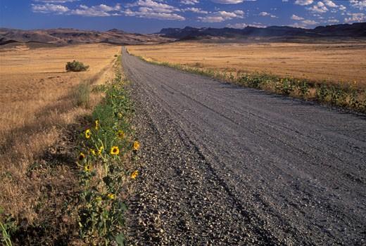 Dirt road passing through a landscape, Succor Creek Road, Vale District Bureau of Land Management, Oregon, USA : Stock Photo