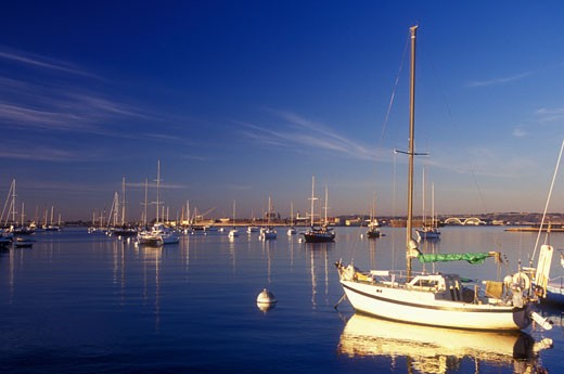 Stock Photo: 1596-917 Boats in a bay, San Diego Bay, San Diego, California, USA