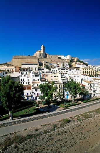 Stock Photo: 1597-100515 Ibiza, Balearic Islands, Spain, Mediterranean coas