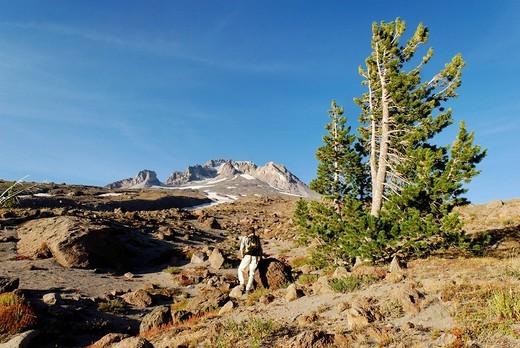 Mountaineer, south face, volcano, Mount Hood, Casc : Stock Photo