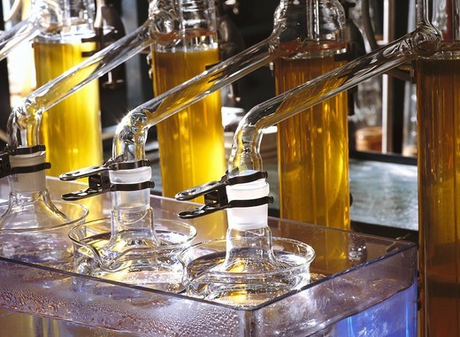 Stock Photo: 1597-103635 Beer, Beverage, Brewery, Brewing, Checking, Control, Economy, Equipment, Europe, European, Examination, Experiment, Experimental