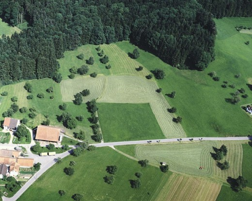 village, fields, surfaces, houses, homes, agriculture, aerial photo, aerial view, Switzerland, Europe, settlement, s : Stock Photo