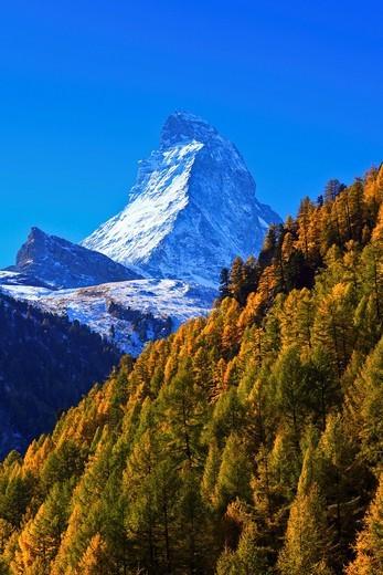 Alps, Alpine panorama, view, tree, mountain, mountains, mountain panorama, mountain point, trees, cliff, rock, mountains, summit : Stock Photo