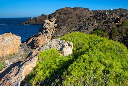 Stock Photo: 1597-105741 Cap de Creus, Spain, Europe, Catalonia, Costa Brava, sea, Mediterranean Sea, coast, rock coast, cape, rock, cliff, cliff forms,