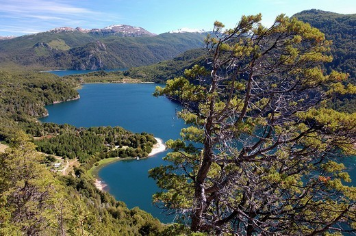 Mirador del lago Verde, Parque National Los Alerces, Nationalpark, Andes, mountain range, Trevelin, Chubut, Patagonia, : Stock Photo