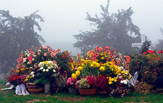 burial, funeral, flower, floral decoration, cemetery, grave, last greetings, nature, fog, plant, death, weather, : Stock Photo