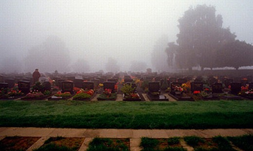 burial, funeral, cemetery, nature, fog, death, weather, : Stock Photo