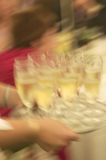 champagne, champagne, service, hands, service, waiter, waitress, cafe, drinks, blurred, catering, tray, restaurant : Stock Photo