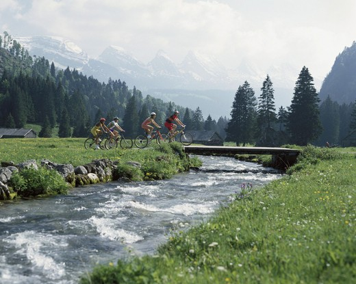 bicycle, bike, Switzerland, Europe, riding a bicycle, biking, riding a bike, bicycle driving, Alps, mountains, alp, : Stock Photo