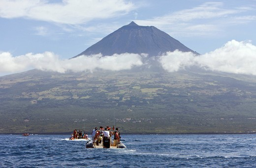 Tourists, Whale watching Tour, Portugal, Azores, A : Stock Photo