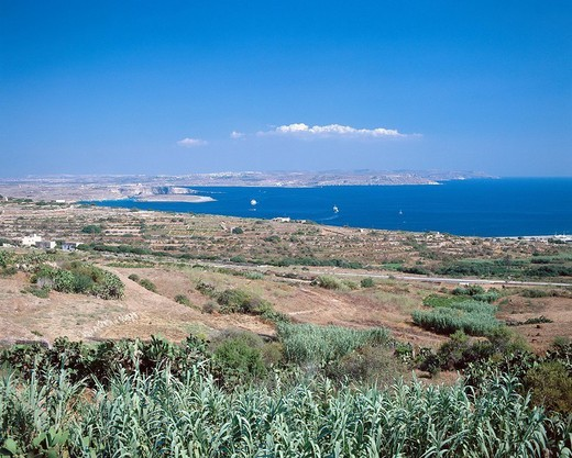 Malta, Gozo, scenery, fields, view, Comino, sea : Stock Photo