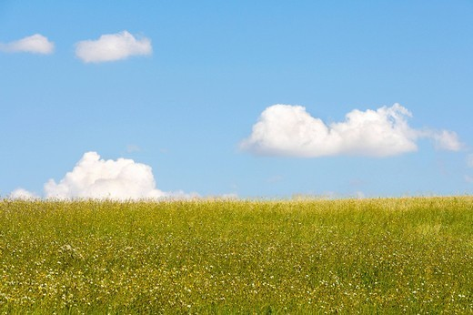 Stock Photo: 1597-121115 background, blue, breeze, climate, cloud, clouds, concept, cumulus, deserted, empty, fluffy, grass, green, sky, horizo